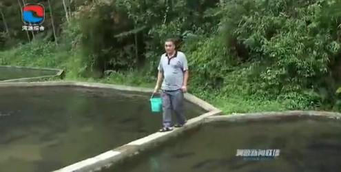 """残疾创业者陈运吉:用努力为事业打开""""丰收""""之窗"""