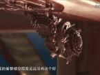 南粵瑰寶Ⅱ·圍屋紀事 天圓地方(下)