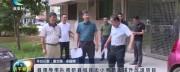 8月1日连平新闻
