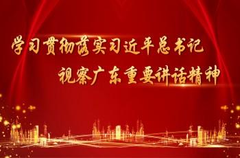 学习贯彻落实习近平总书记视察广东重要讲话精神