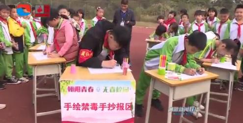 團市委組織志愿者進學校宣傳禁毒